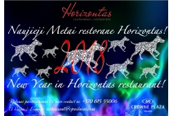 "New Year Eve in Restaurant ""Horizontas"""